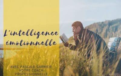 Intelligence émotionnelle ou comment tirer profit de vos émotions ?