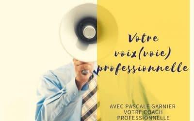 Votre voix(voie) professionnelle